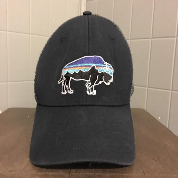 2806df87 Patagonia Accessories | Fitz Roy Bison Lo Pro Truckers Hat | Poshmark